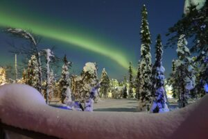 The northern lights, a green slash across the sky above deep snow and trees.