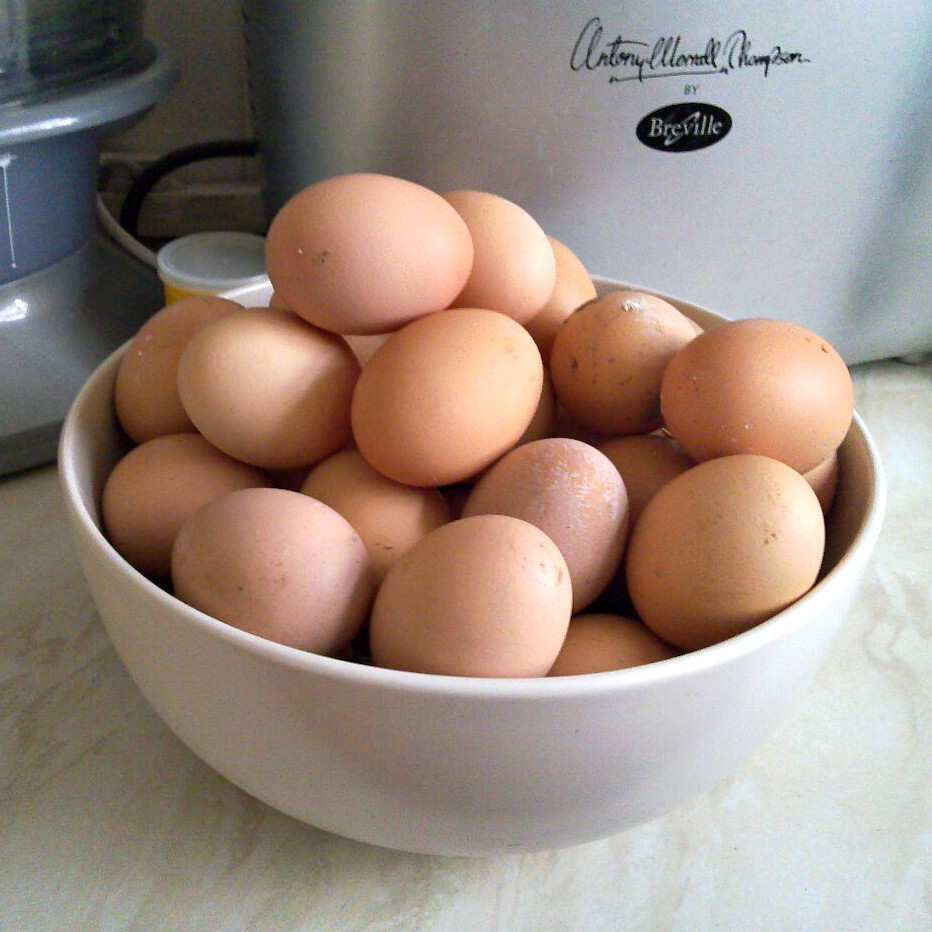 40 brown chicken eggs in a fruit bowl