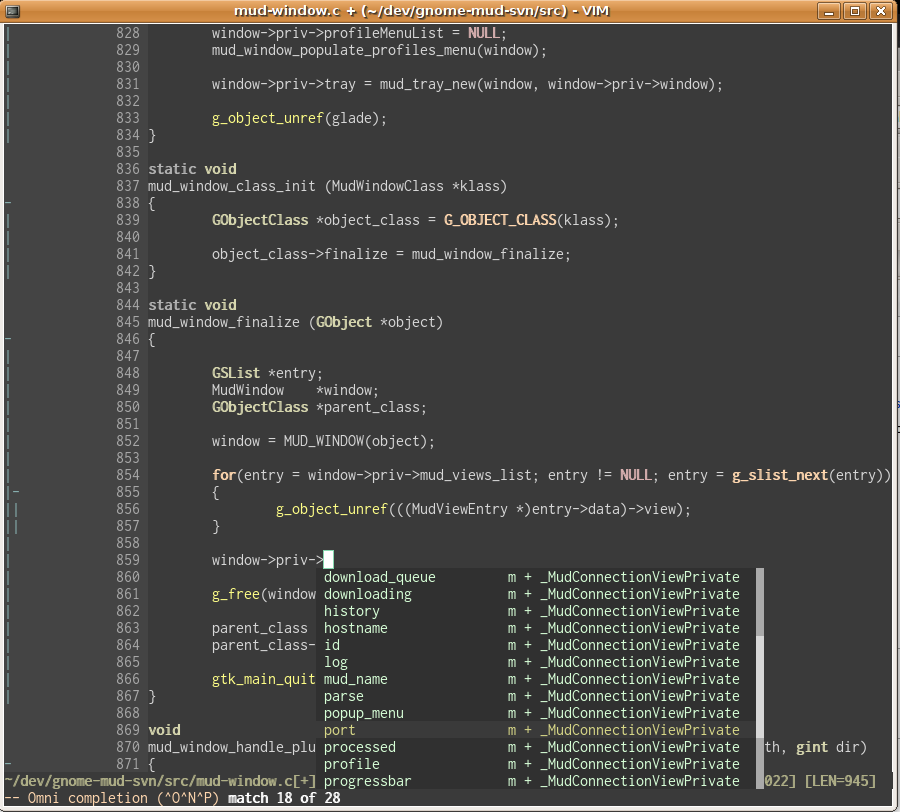 VIM Project Completion