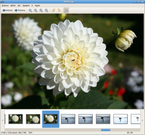 Eye of GNOME 2.20.0
