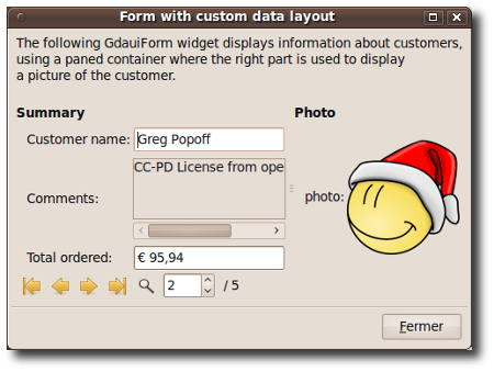 Form custom layout